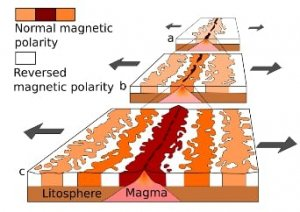 The-alternating-pattern-of-magnetic-striping-on-the-seafloor