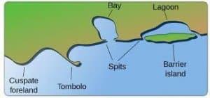 Wave Landforms depositional