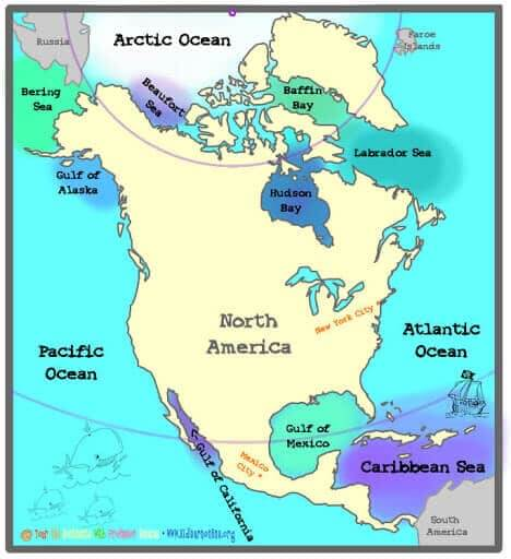 Gulfs of North America