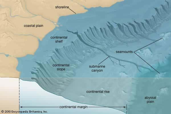 Continental-shelf-slope-Rise-abyssal-plain