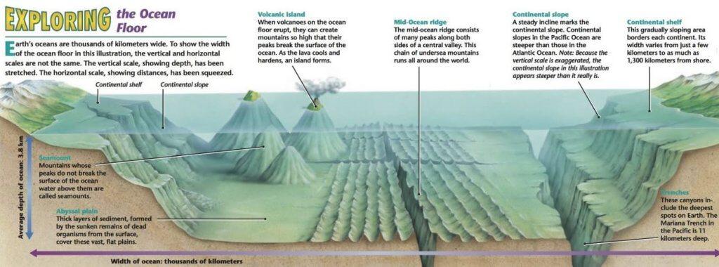 Major Ocean Relief Features