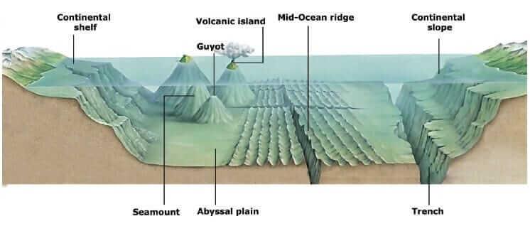 Ocean Relief Features
