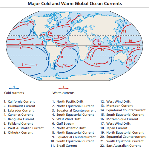 cold and warn ocean currents