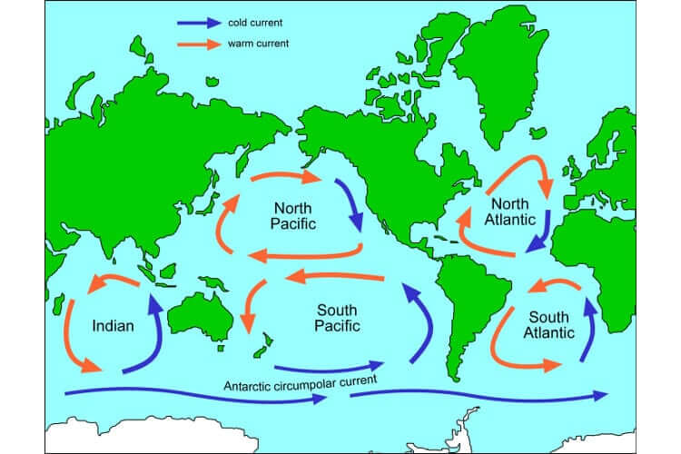 ocean currents gyre