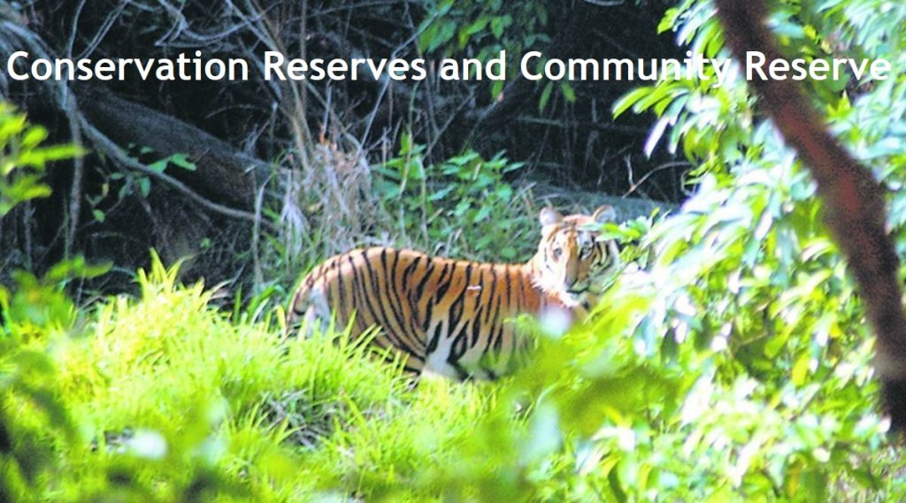 Conservation Reserves and Community Reserve