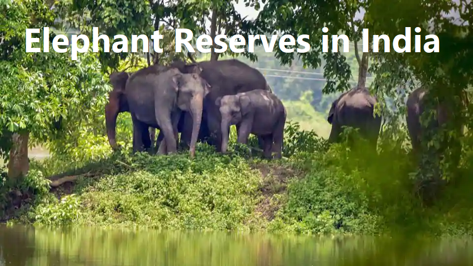 Elephant Reserves in India UPSC