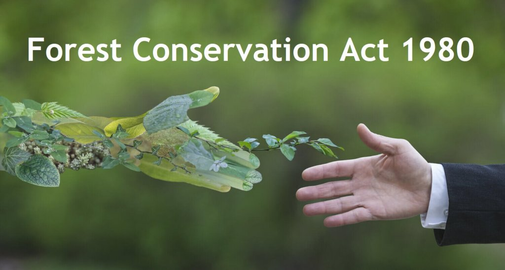 Forest Conservation Act 1980