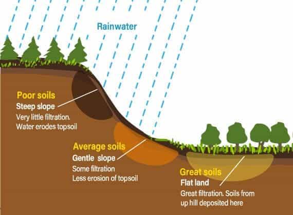 Soil Forming Factors relief