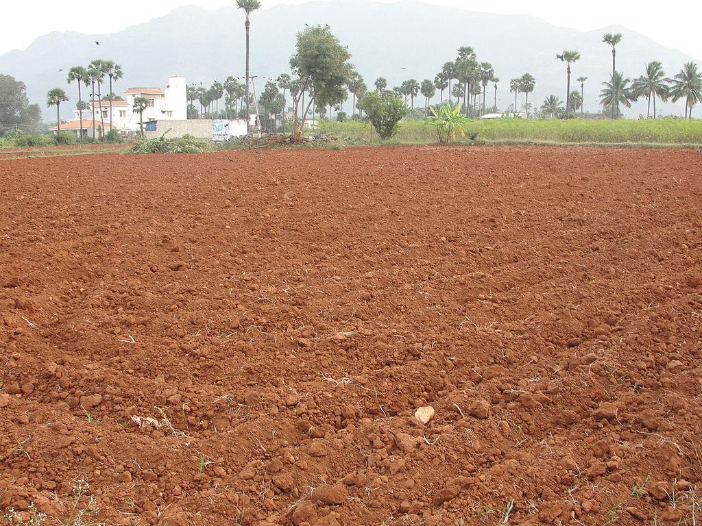 Types of Soil in India – Red Soil