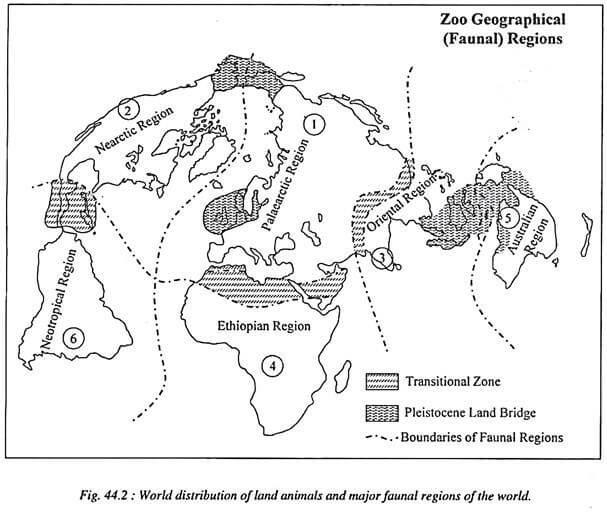 world distribution of animals