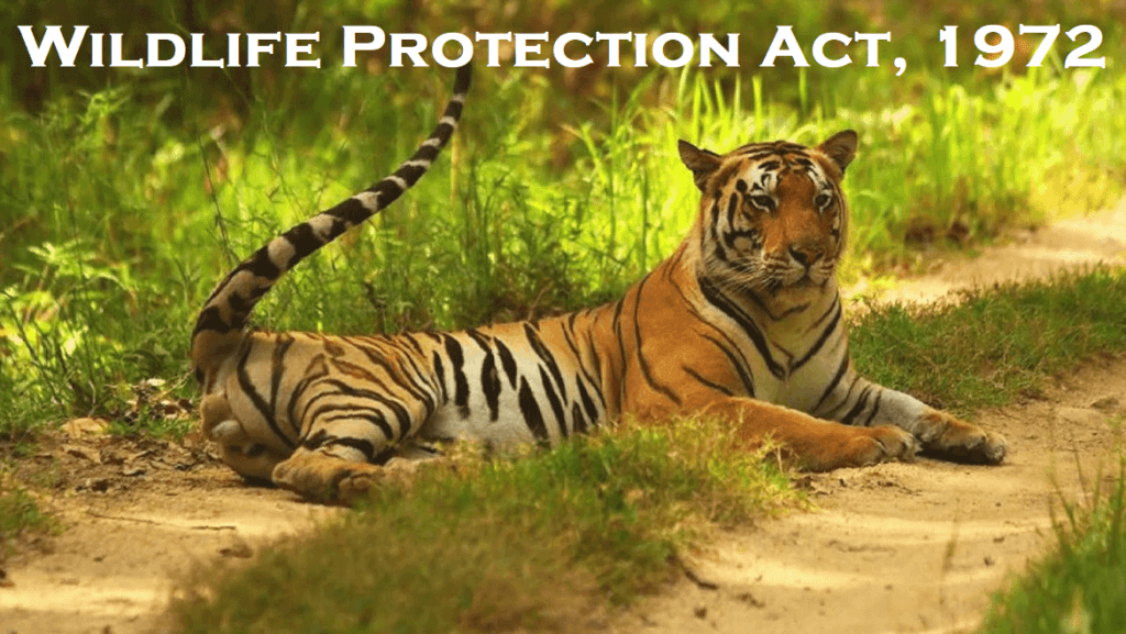 Wildlife Protection Act 1972