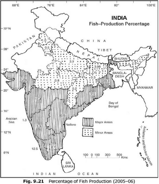 Indian fish production percentage 2005-06