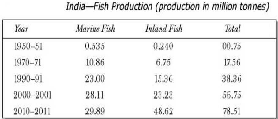 indian fish production