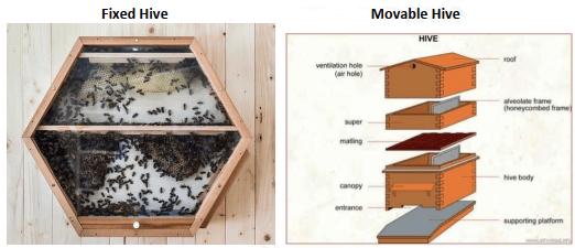 Indigenous method of bee keeping