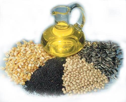 Oil Seed Crops
