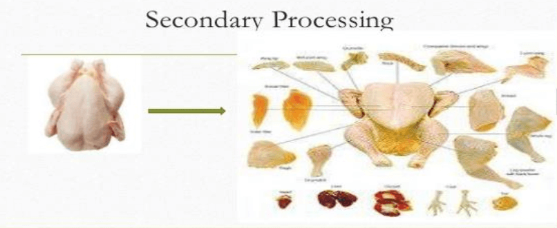 Poultry Farming secondary processing