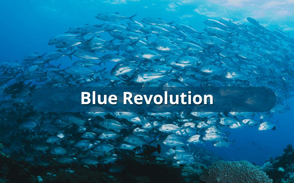 blue revolution upsc