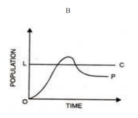 Limits to Growth Model B