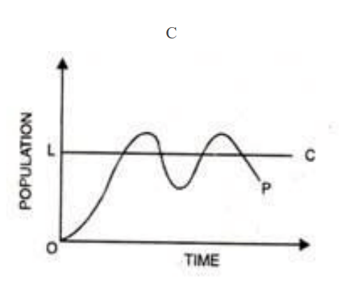 Limits to Growth Model C
