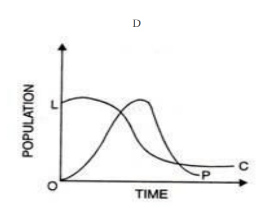 Limits to Growth Model D