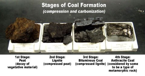 Types-of-coal-Peat-Lignite-Bituminous-Anthracite-Coal