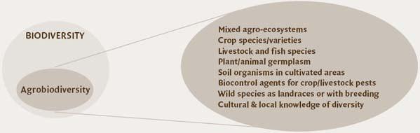 agro biodiversity upsc