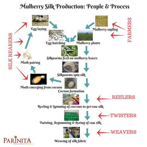 mulberry silk production process