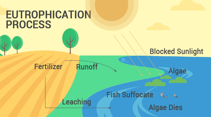 eutrophication process upsc