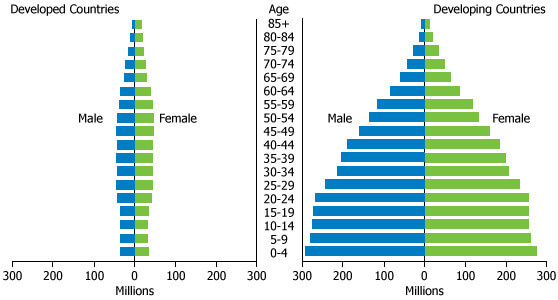 population pyramid in developing countries
