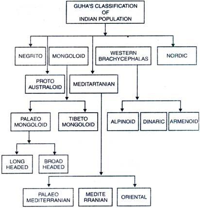 B.S. Guha's Classification
