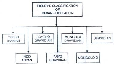 Risley's Classification