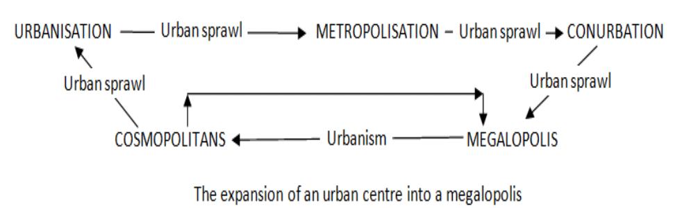 Urbanization process upsc