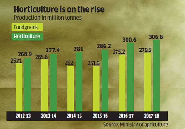 Horticulture Sector is on rise