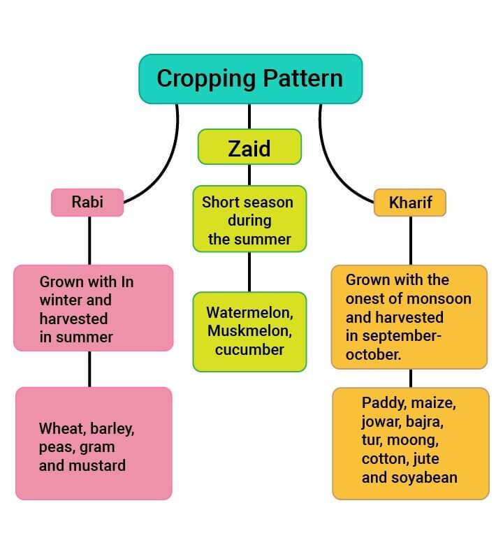 cropping pattern in india