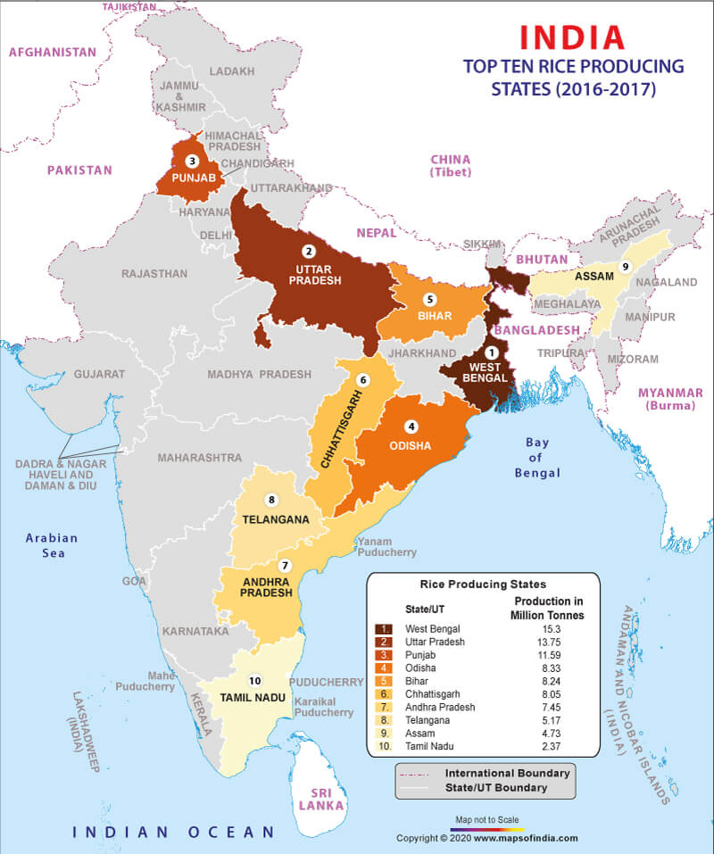 rice map of india